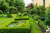 Square beds edged by low hedges in summer garden