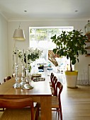 Glas Kerzenhalter auf Esstisch aus Eichenholz mit passenden Stühlen, im Hintergrund Gummibaum vor breitem Durchgang