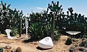 White modern outdoor furniture in landscape with large cacti under blue sky