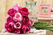 Tulipa 'Don Juan' and 'Rosalie'
