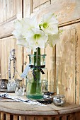 Weiss blühende Amarillis in Glasvase mit Schleifenband verziert auf Wandkonsole aus Holz