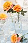 Orangefarbene Rosen in Glasvasen