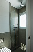 Floor-level shower with window and glass partition in contemporary bathroom