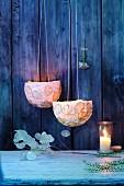 Natural decorations - silver ragwort lamps