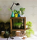 Mobile vintage shelf decorated with flower pots