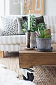 White candle in rustic candlestick and succulent on coffee table with castors