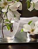 Dogwood flowers on silver tray