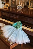 Family photos on top of grand piano and tutu on piano stool