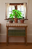 Potted plants on simple console table with lace trim below farmhouse window