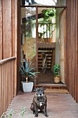 Wooden house with view into foyer through open front door and dog in foreground