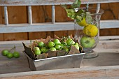Bark and green apples in loaf tin and fruit in glass container