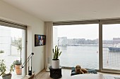 Corner of living room with panoramic view of harbour entrance, potted house plant on side table and dog lying on floor cushion
