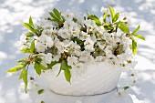 Cherry blossom in white ceramic bowl