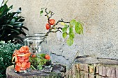 Physalis, moss and gnarled fruit tree branch in old glass jar