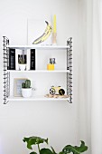Yellow ornaments and cacti on modern black and white metal shelves