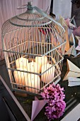Lit pillar candles in disused birdcage next to pink hydrangea flowers