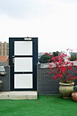 Metal door in brick half-height wall on roof terrace with red-flowering potted tree on artificial lawn