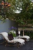 Agapanthus flowers between vintage-style loungers in front of terrace wall