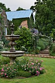 Flowering rosebushes around stone fountain in garden with partially visible country house in background