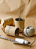 DIY plant pots made from brown paper and string