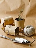Selbstgemachte Pflanztöpfchen aus Packpapier & Schnur