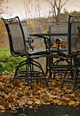 Metal chairs and table amongst autumn leaf-litter in garden