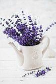 Bouquet of fresh lavender in retro teapot
