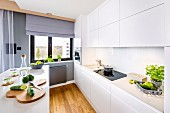 Open-plan white kitchen with island counter