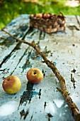 Stillleben mit zwei Äpfeln und verwittertem Ast auf Vintage-Gartentisch