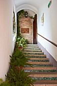 Covered, outdoor staircase with potted ferns on treads at Villa Cimbrone in Italy