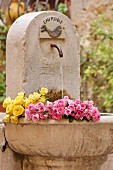 Cut roses lying in stone fountain in garden