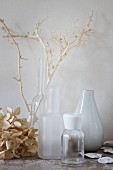Dried hydrangea flower and twig next to various vases