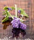 Lavendelblüten auf feuchtem Holzuntergrund