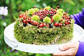 Hand-made ornamental cake made from moss, berries and sweet chestnuts for bird feeding station