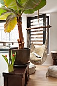 Hanging chair, floor cushions, banana tree and drum in relaxation area