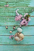 Easter eggs and quail's eggs in bowl, silver Easter bunny and cherry blossom on wooden surface