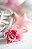Pink rose: festive star bauble in blurred background