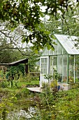 Greenhouse and wooden deck next to pond in garden