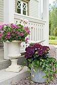 Amphore und Eimer mit Blumen vor einem Schwedenhaus