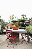 Tisch und rote Klappstühle auf Kiesboden in einer Gärtnerei