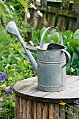 Old watering can on wooden table in garden