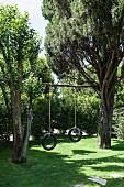 Two tyre swings hanging from pole between trees in summery garden