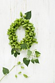 Wreath of hops on wooden surface