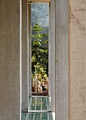 Concrete pillars on terrace with view of plants in sunny garden