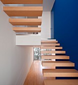 Minimalist staircase with cantilever wooden treads and one wall painted royal blue