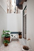 Potted plants on floor next to table in narrow, urban courtyard