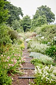 Sloping gravel path with wooden sleepers in flowering gardens