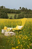 Yellow metal chair and picnic supplies in field of flowering rapeseed