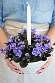 Purple African violet and white candle in ceramic bowl held in woman's hands
