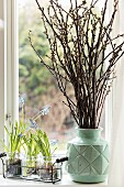 Grape hyacinths in glasses and vase of cherry branches on windowsill